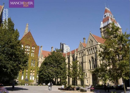 Dissertation University Of Manchester